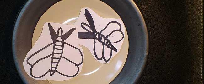 El sabor de las libélulas