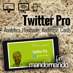 Curso Twitter Pro
