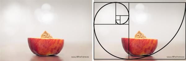 Simetria https://www.dzoom.org.es/descubre-que-es-la-proporcion-aurea-y-como-puede-ayudarte-en-la-composicion-de-tus-fotos/